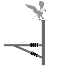 vogelschutz01