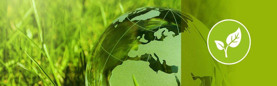 eine Erde aus Glas liegt im Gras