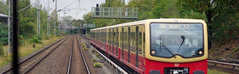 Zug der Berliner Ringbahn